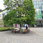 【豊田駅】イオンモール多摩平の森 森のステージゲート