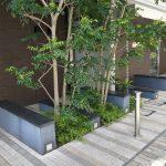 【赤羽駅】パークハウス赤羽前通りの休憩場所
