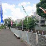 【生田駅】五反田川緑道の休憩場所