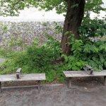 【生田駅】三田第7公園の休憩場所