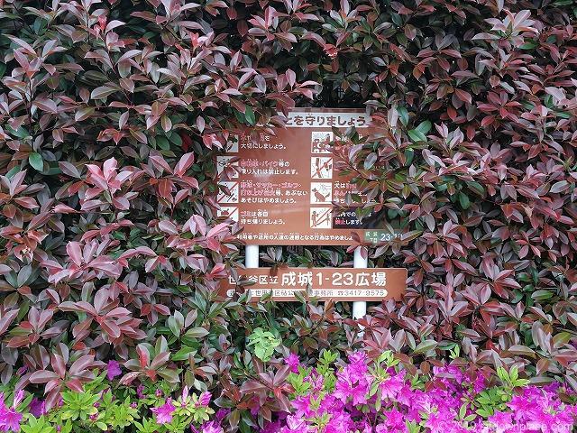 成城1-23広場の看板