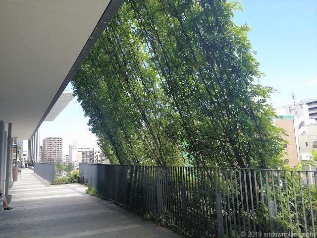 ソラマチ2Fデッキ4番地付近グリーンカーテンの夏でも涼しい休憩場所