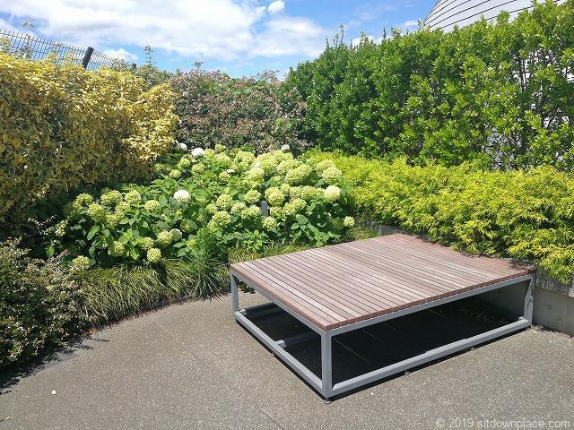 ソラマチ8Fドームガーデンの紫陽花とベンチ