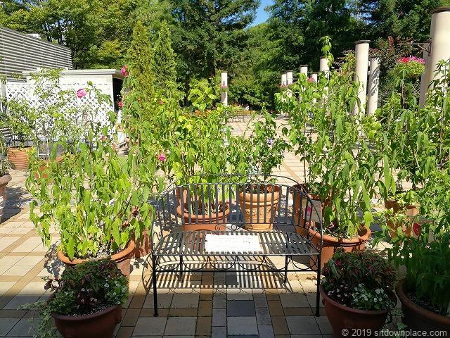 久屋大通庭園フラリエ中庭のプランターと鉄製ベンチ