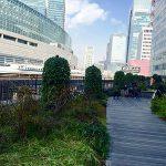 【有楽町駅】東京交通会館 3F 屋上庭園 有楽町コリーヌの休憩場所