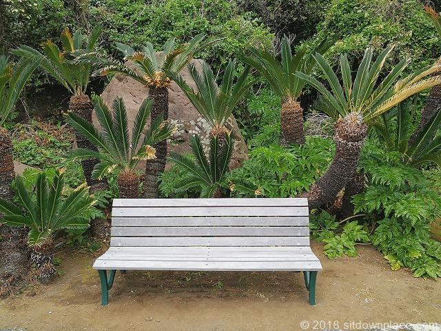 初島アイランドリゾート側歩道のベンチ