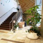 【武蔵小山駅】etomo1F 階段付近