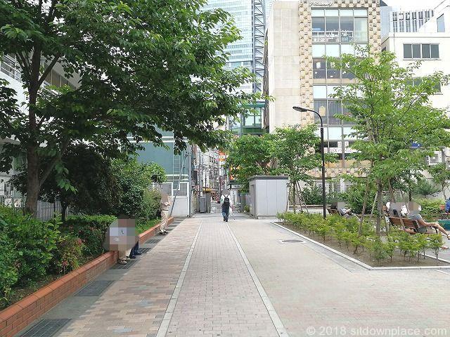 桜田公園の様子