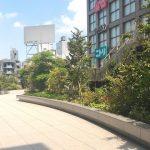 【新宿駅】NEWoMan3F サウステラスの休憩場所