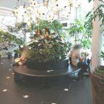 【二子玉川駅】ライズ 蔦屋家電2F出入口の休憩場所