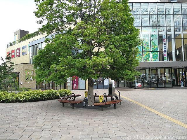 豊田駅イオンモール前の木製ベンチ
