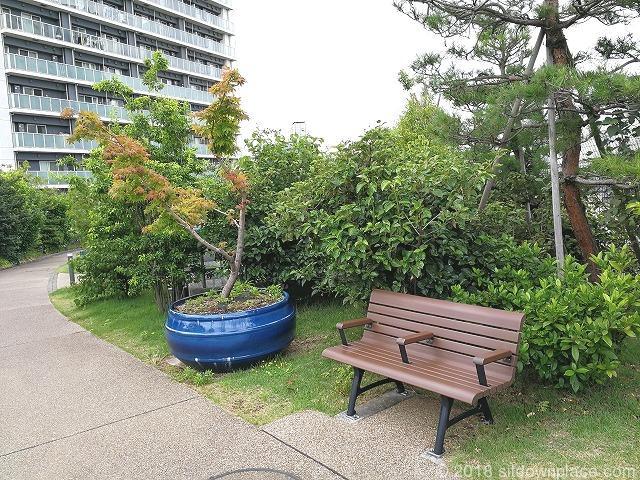 目黒天空庭園の盆栽と木製ベンチ
