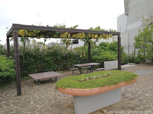 目黒天空庭園のぶどう棚と木製テーブル席