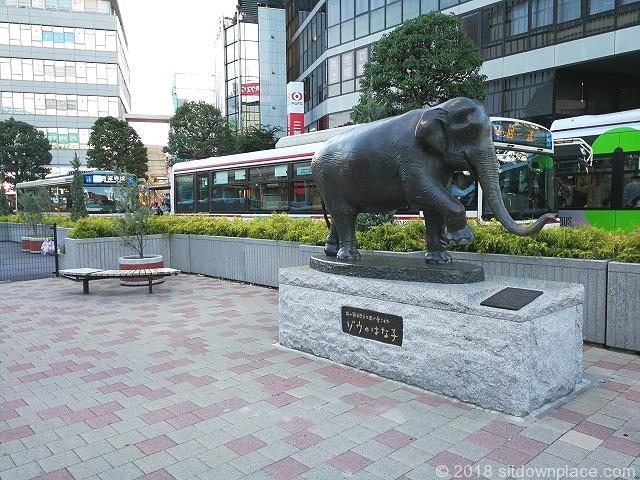 吉祥寺ゾウのはな子銅像付近の座れる休憩場所