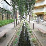 【新座駅】ふるさと小道の休憩場所