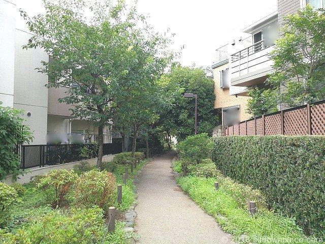 丸山公園付近の蛇崩川緑道