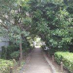 【三軒茶屋駅】蛇崩川緑道 丸山公園付近の休憩場所