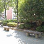 【国分寺駅】殿ヶ谷庭園 開放公園の休憩場所