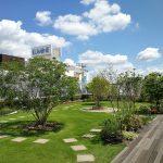 【大宮駅】ルミネ2 4F 屋上庭園の休憩場所