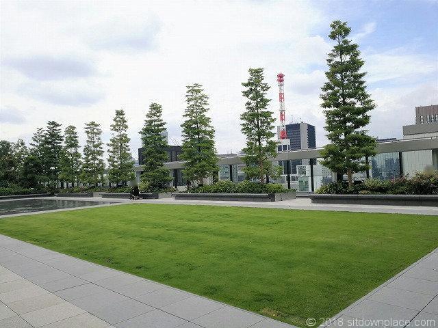 銀座シックス屋上庭園の芝生
