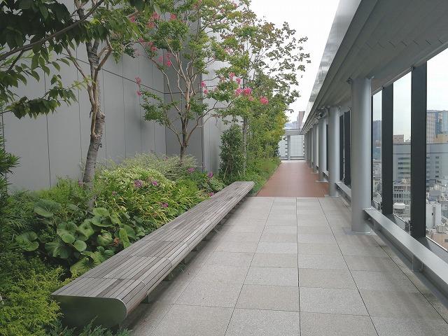 銀座シックス屋上庭園のガラス付近にある木製ベンチ