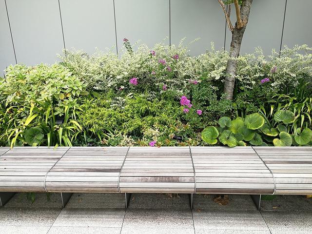 銀座シックス屋上庭園のガラス付近にある木製ベンチ詳細