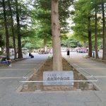 【池袋駅】東池袋中央公園の休憩場所