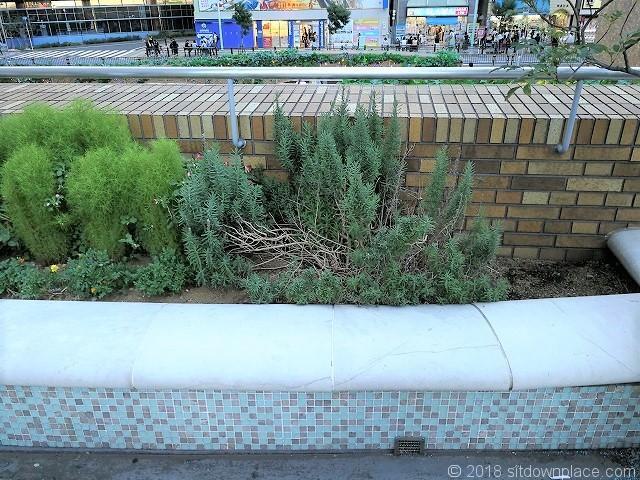 サンシャインスペイン階段のベンチ詳細