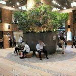 【吉祥寺駅】アトレ1F はなびの広場の休憩場所