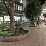 【吉祥寺駅】東急横 吉祥寺通り付近の休憩場所
