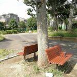 【下北沢駅】どんぐりひろば公園