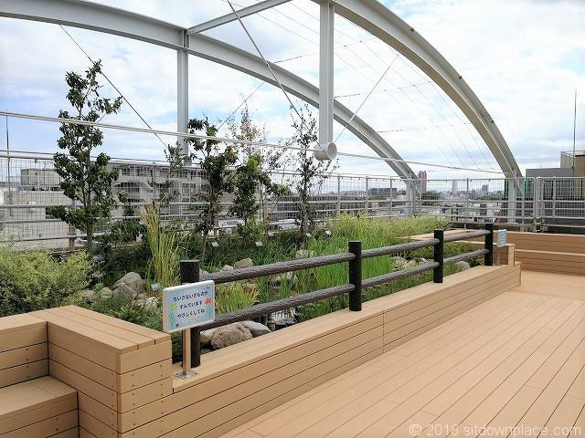 北沢タウンホール5F屋上庭園のビオトープ外観