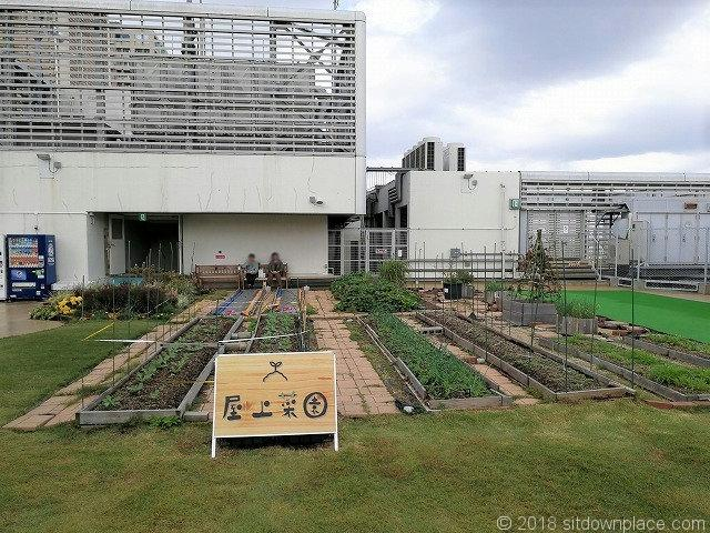 ルミネ北千住屋上広場の屋上菜園