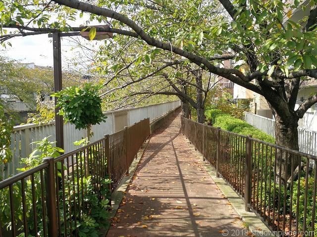 木更木橋の散歩道