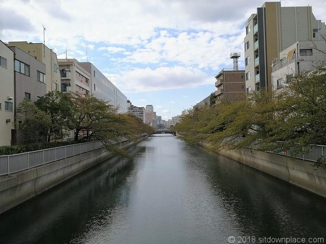 仙台堀川の景観