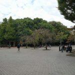 【清澄白河駅】清澄庭園児童公園の休憩場所