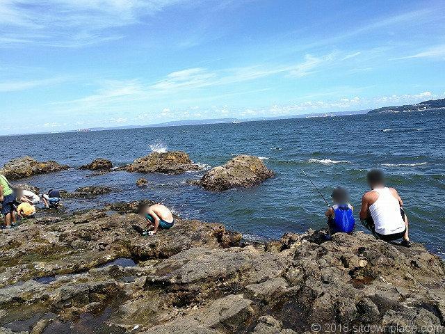 猿島のオイモノ鼻の釣り・磯観察
