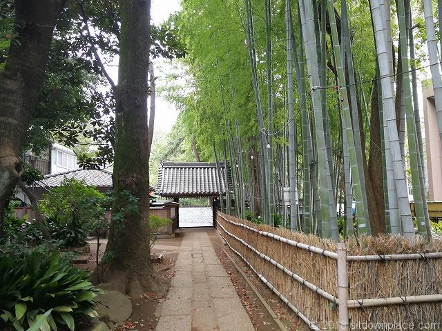 妙福寺の竹林