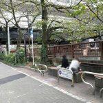 【中目黒駅】目黒川 ガード下~桜橋の休憩場所