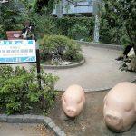 【中目黒駅】目黒銀座児童遊園の休憩場所