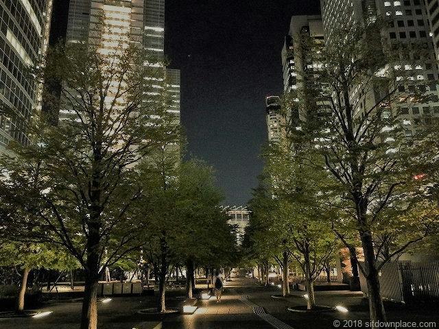 汐の公園品川セントラルガーデンの夜景