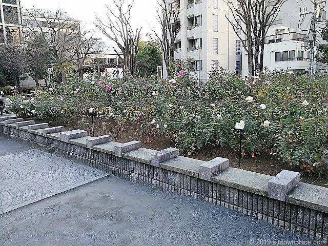 赤坂氷川公園の石材ベンチ