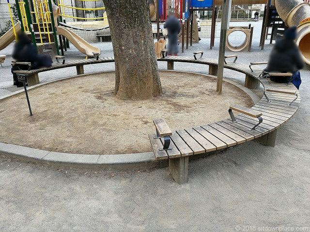 芳林公園の円形ベンチ