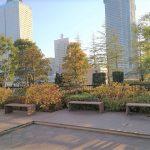 【桜木町駅】アニヴェルセル コスモワールド側の休憩場所