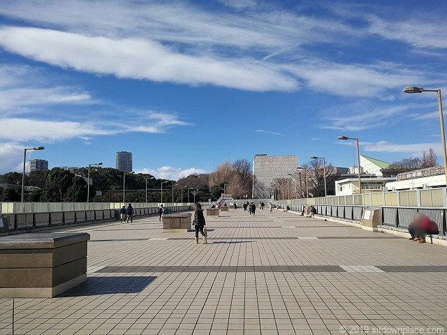 パンダ橋口から上野公園を眺めた景観