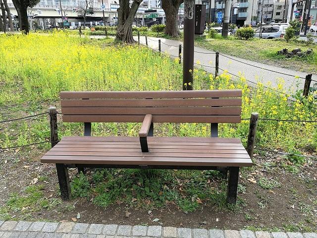芝公園体力測定健康歩道のベンチ