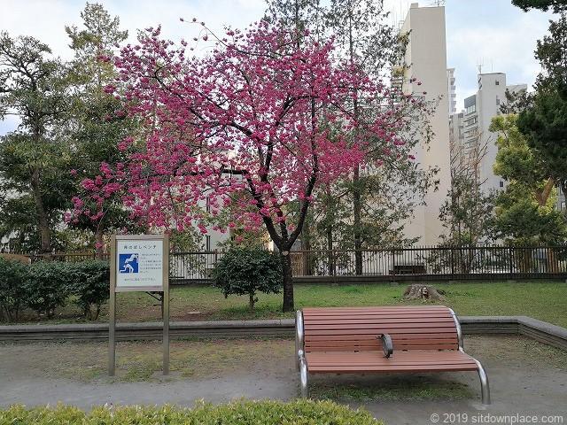 芝公園18号地のびのび広場の背のばしベンチ