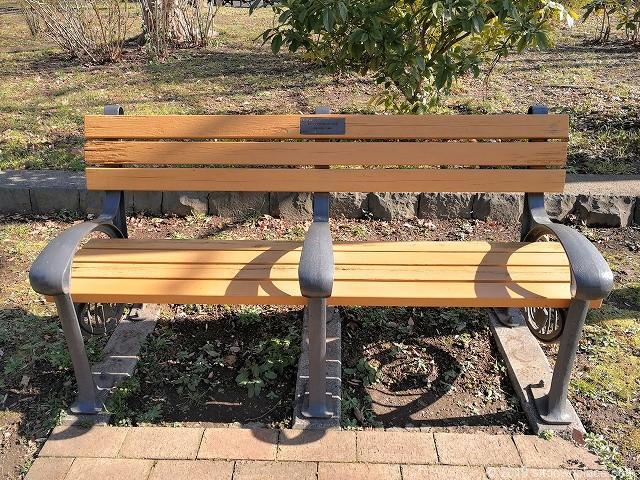芝公園の4号地のベンチ