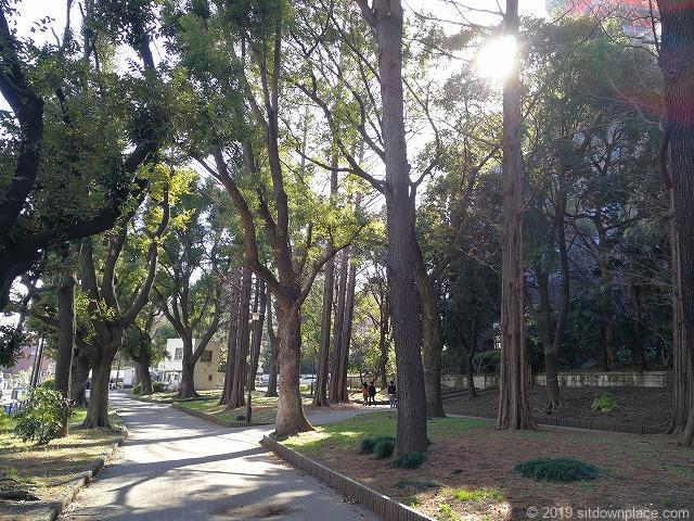芝公園23号地の景観