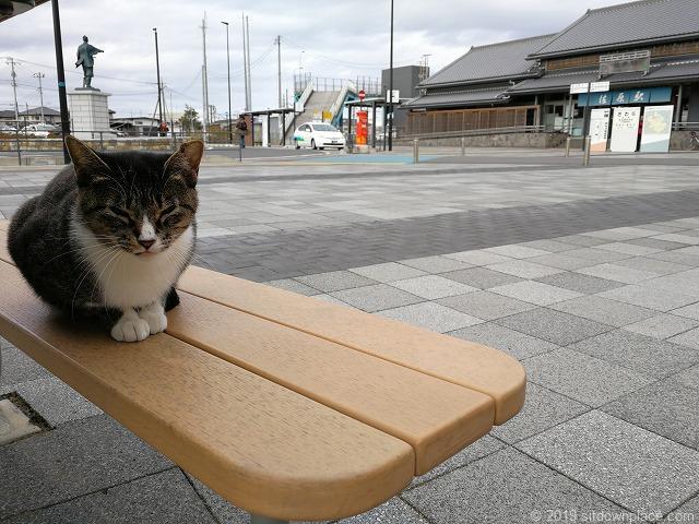佐原駅南口交番横のテーブルに座る猫と駅舎